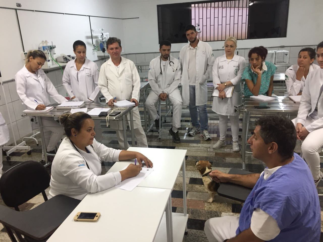 Projeto da Medicina Veterinária : Estratégias de Ensino Aprendizagem para o Desenvolvimento das Competências humanísticas
